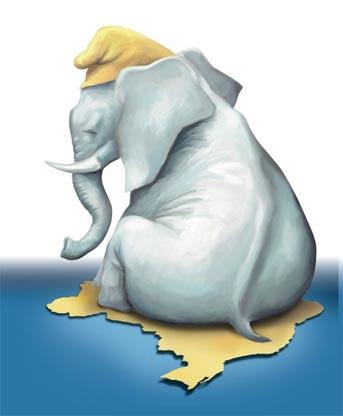 Elefante-Branco